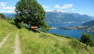 Percorsi guidati in Mountain bike sul lago di Como